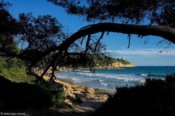 Cala de Becs o de la Roca Plana. Espai natural del Bosc de la Marquesa.Al fons, la punta i la torre de la Mora.Tarragona, Tarragonès, Tarragona