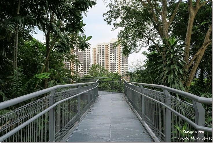 新加坡花柏山 (59)