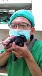 陳醫師與寶寶