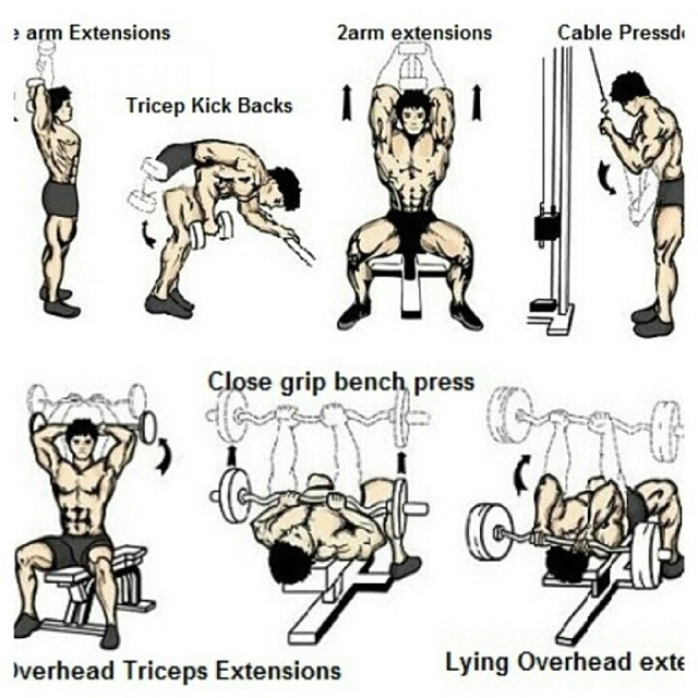 FITNESS MOTIVATION Tricep Workout