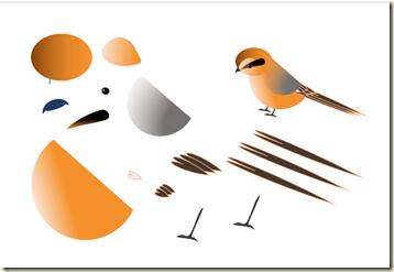 野鳥の描き方・1