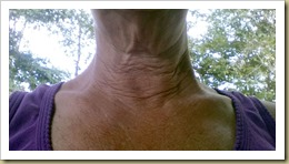 Neck before using Face Life with Activator - Thoughts in Progress