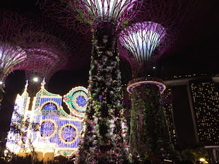 Lighting displays at the supertree grove