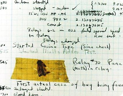 computer-bug