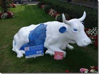 2015.09.09-027 vache lactée nourricière