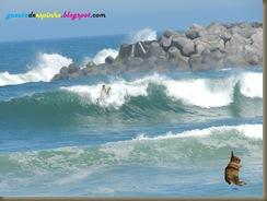 Blog010-2015-06-27Gazeta de Espinho