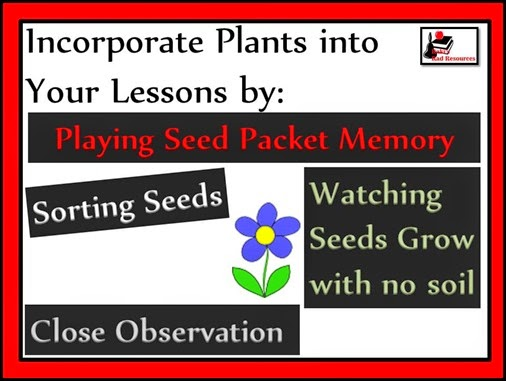 Twenty ways to learn about seeds and plants or incorporate seeds and plants into your lessons - everything from growing a garden in soil to hydroponics to exploring seed catalogs. Twenty different ideas for your classroom or homeschool environment brought to you by Raki's Rad Resources