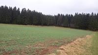 20150417_allgemein_besichtigung_sommerlagerplatz_171505_neu.jpg