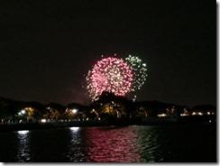 NYC Fireworks 2