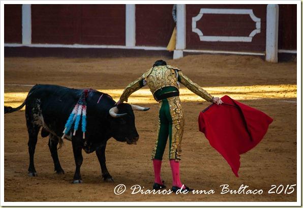 Toros Feria 2015-9881