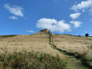 Path to Roseberry Topping above Newton Wood