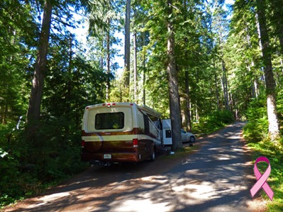 Heart O' the Hills Campground, Olympic National Park