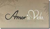 looks da novela Amor a Vida