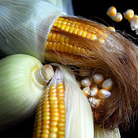 Go with corns by Asif Bora - Food & Drink Fruits & Vegetables