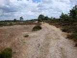 Nog meer (Kootwijker) zand.