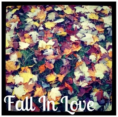 fall, otoño, Galicia