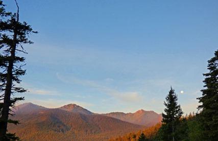 Mountain View on way to Hurricane Ridge