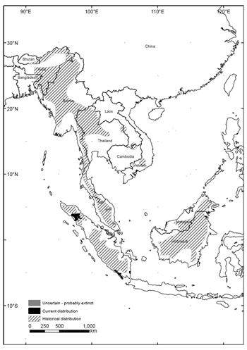 The Sumatran rhino had its range across most of South-east Asia (lined areas). Today it only lives in the wild in Indonesia (black areas). Graphic: Havmøller, et al., 2015 / Oryx