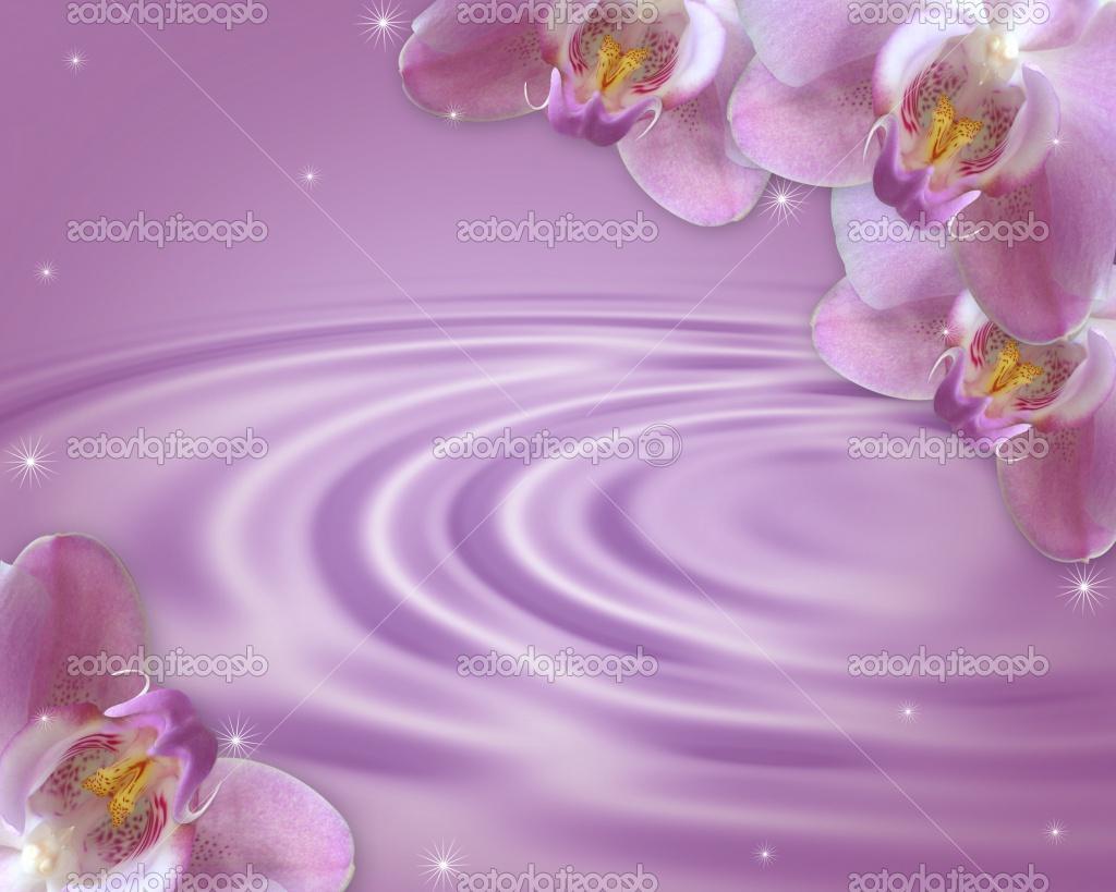 illustrated lavender satin