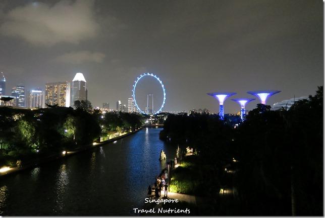 新加坡超級樹燈光秀 (40)
