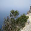 Mallorca 2009 034.jpg