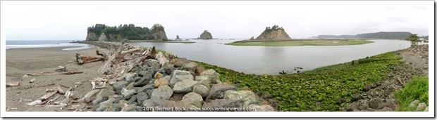 150706_LaPush_FirstBeach_pano