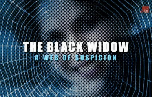 Czarna Wdowa w kr�gu podejrze?/ The Black Widow (2008) PL.TVRip.XviD / Lektor PL