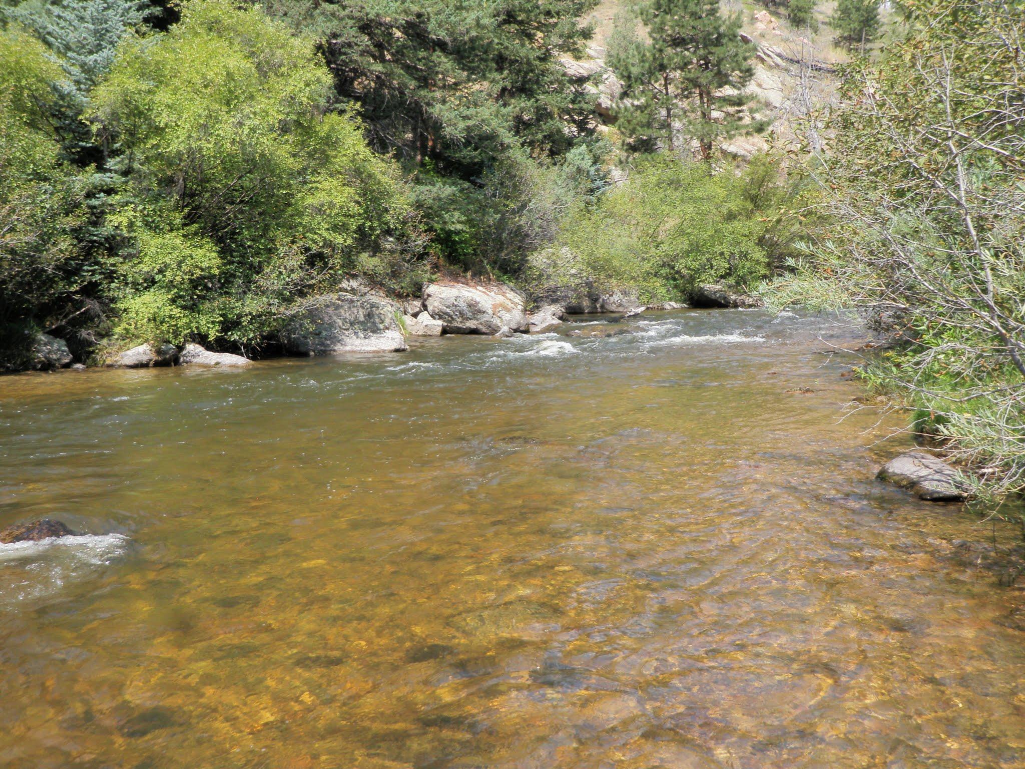 South boulder creek 08 26 2015 dave weller 39 s fly for Boulder creek fishing