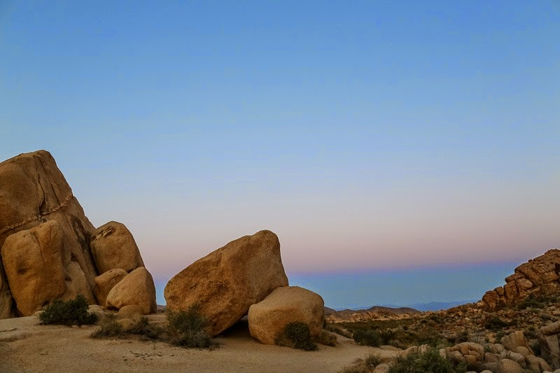 evening in joshua tree-15a