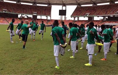 Sunday Oliseh, The Bumbling Super Eagles Coach