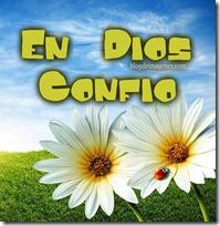 en dios confío 6