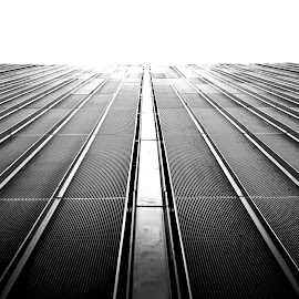 Steel by Rebeka Legovic - Buildings & Architecture Office Buildings & Hotels ( skyscraper, black and white, architectural, architecture, steel )