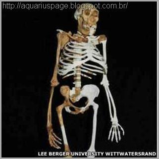 esqueleto-mistura-homem-e-primata