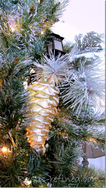 Pinecones on a Tree