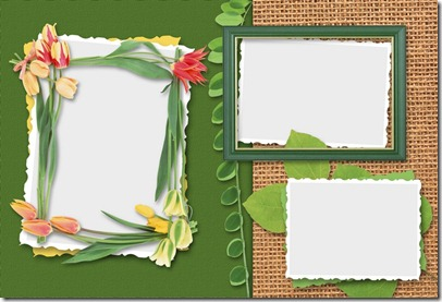Tulip Flowres Photo Frame sample