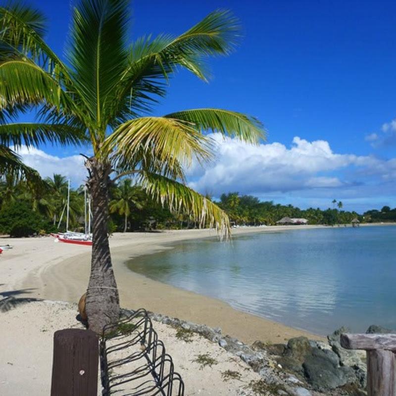 Logbook: Musket Cove on Malolo Island (Fiji)