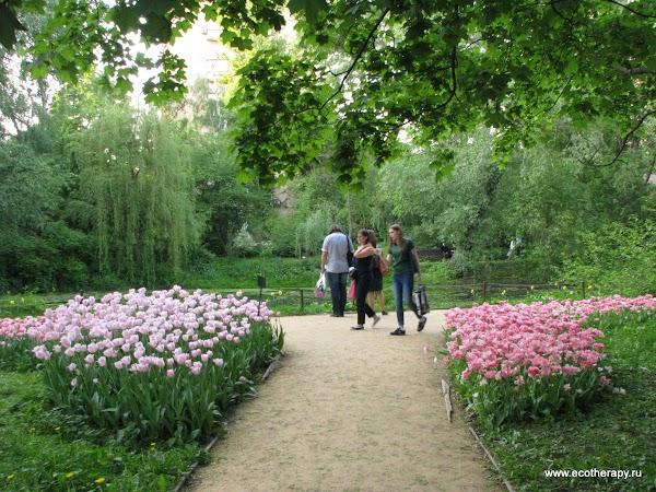 Экотерапия в Москве - снятие стресса: http://ecotherapy.ru