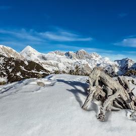 Grintavec by Tomo Šavs - Landscapes Mountains & Hills ( sneg, zima, gore, nikon, nebo )