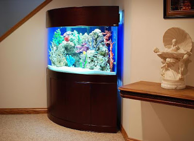 Image of fish tank in corner of room