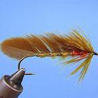 5. Jeżynkę w postaci kołnierza wykonuję z miękkiego pióra ubarwionego tak, jak skrzydełka. Główkę lakieruję szelakiem.