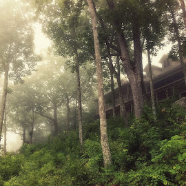 Foggy Morning at Eagle Rock Camp and Retreat Center by Michael Gonzalez - Landscapes Cloud Formations ( great smoky mountain, foggy, treeporn, forest, smoky mountain, house, morning, lodge )