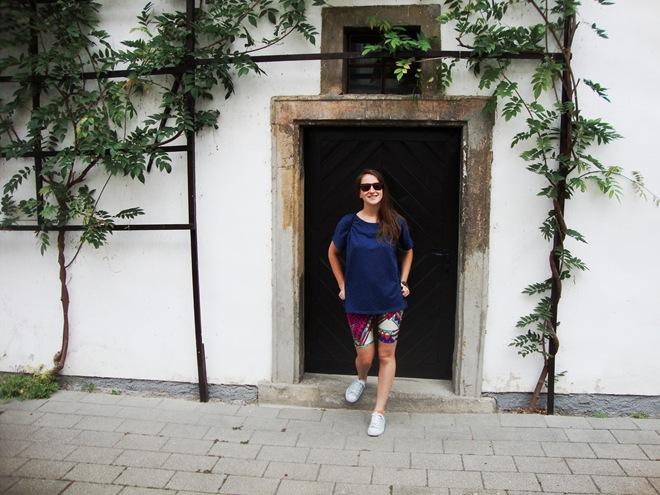 Slovenska Bistrica potep