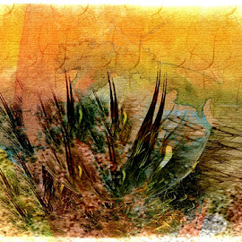 Desert Scene by Nancy Bowen - Illustration Flowers & Nature ( desert, green, gold, cactus )