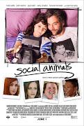 Social Animals