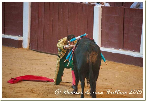 Toros Feria 2015-0017