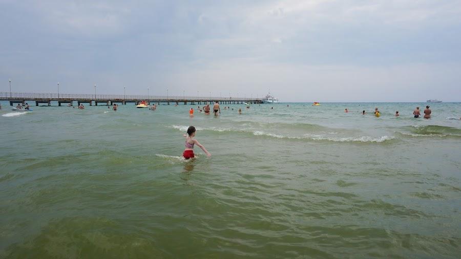 Зеленое Черное море