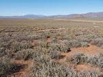 """The Tonqua Karoo, or """"Little Desert"""""""