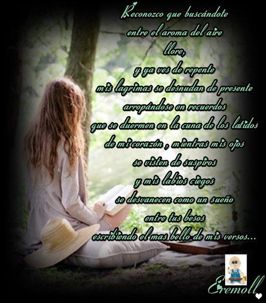 el mas bello de mis versos eremoll (1)