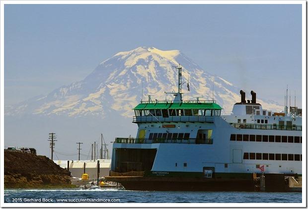 150704_Tacoma QuartermasterHarbor_0023