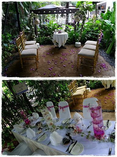 Wedding Invitations - Wedding